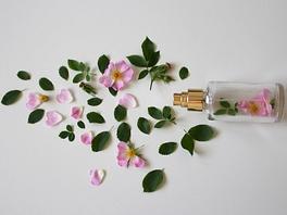 26wrm41zatyl5bo-scent-of-roses-3397281-1280.jpg